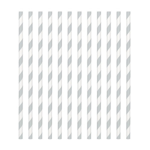 Amscan Party Straws - Candy Stripe - Silver (Pack of 24)