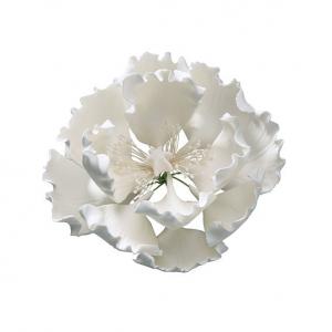 Culpitt Gum Paste Flower - Open Peony - White