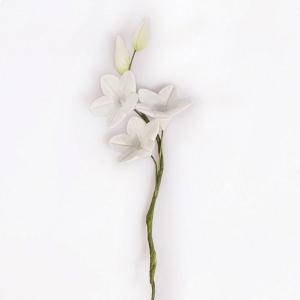 Culpitt Gum Paste Flower - Jasmine Spray (Box of 10)