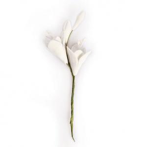 Culpitt Gum Paste Flower - Freesia Spray (Box of 10)