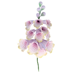 Culpitt Gum Paste Flower - Anemone & Berry Spray