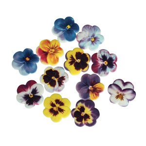 Culpitt Soft Sugar Pansies - Assorted Colours (Box of 60)