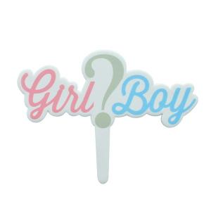 "Culpitt Gumpaste Decoration - ""Girl or Boy"" Cake Topper"