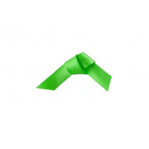Doric Double Faced Woven Edge Satin Ribbon - Apple Green - 15mm x 25m