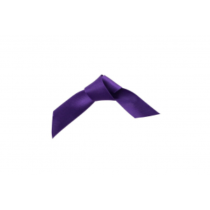 Doric Double Faced Woven Edge Satin Ribbon - Mulberry - 15mm x 25m