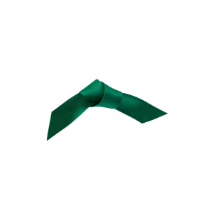 Doric Double Faced Woven Edge Satin Ribbon - Forest Green - 15mm x 25m