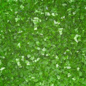 Rainbow Dust Edible Glitter - Holly Green (5g)