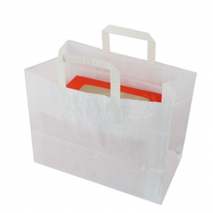 Paper Carrier Bag for 6 Cavity Boxes
