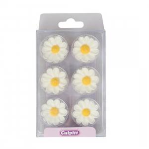 Culpitt Piped Sugar Flowers - Daisies - White