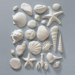 Culpitt Gum Paste Decorations - Sea Shell Assortment - White (Pack of 23)