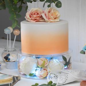 "Culpitt Fill-A-Tier Acrylic Cake Display - 10"" x 4"""