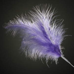 Club Green Feather Spray - Lilac (Pack of 12)