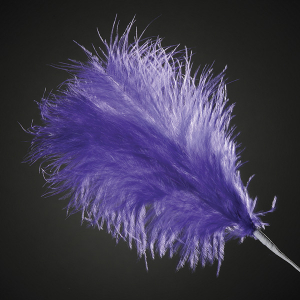 Club Green Feather Spray - Purple (Pack of 12)