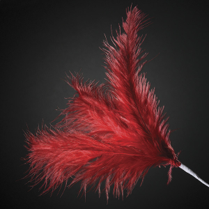 Club Green Feather Spray - Red (Pack of 12)